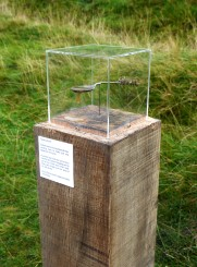 'Tipping Point' - It takes twelve honeybees all their working lives to make just one teaspoon of honey. A worker bee lives for one to four months and when foraging can fly up to four miles from their nest. They can forage over an area of 32,166 Acres. Dove Stone covers approximately 100 Acres.